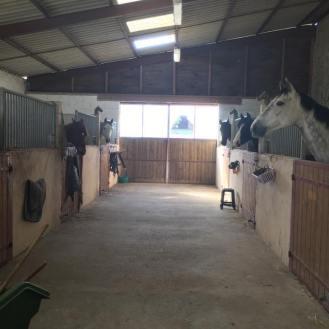 Ecurie réservée au chevaux en dépôt-vente